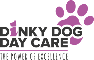 Dinky Dogs Day Care – Plymouth, Devon Logo